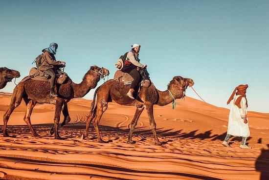 Hiking Trip + Sahara Desert