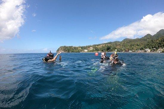 Descubra o mergulho