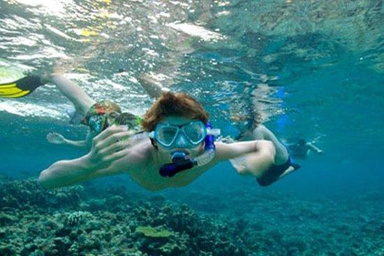Snorkling i Unawatuna