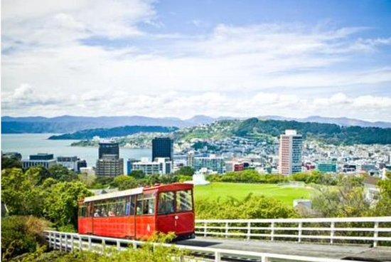 Wellington luksus tilpassede scenic...