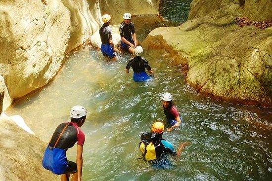 Canyon Acomat 60 euro