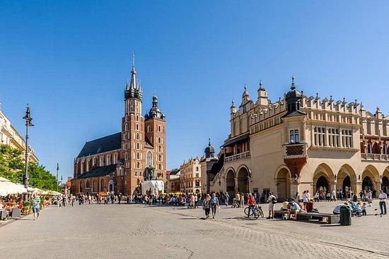 Tour de 12 días por Polonia en tren
