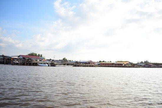 landscape of the river