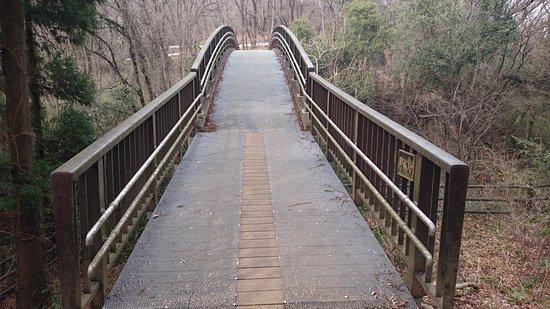 Ota, Japón: 東山側から見た御城橋