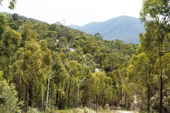 Brindabella National Park: Rugged terrain