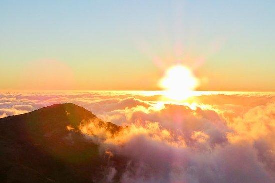 日落和丰沙尔灯之旅