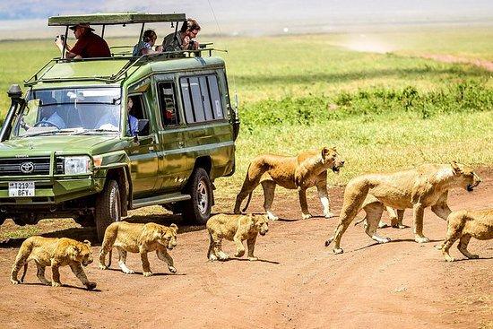 3 jours de safari dans le nord...