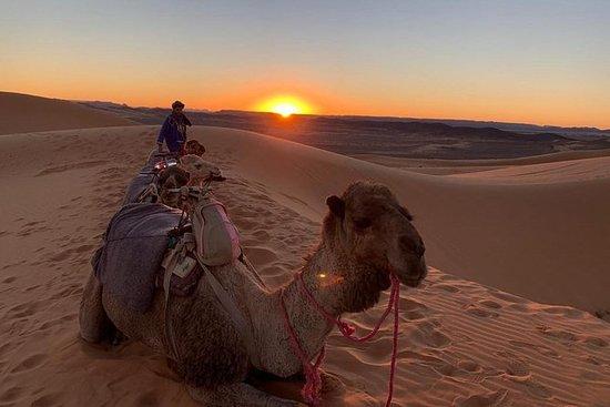 4 dager Marrakech til Marrakech Via...