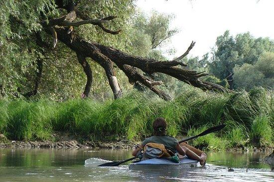 Kayak Trips in Danube Delta