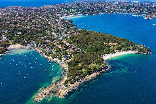 悉尼海港皮划艇之旅