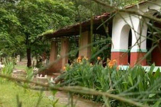 Фотография Vijaynagar