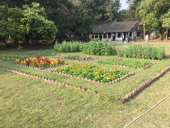 Barrackpur, India: This is another picture of the beautiful garden and lawns of Cantonment residence of British Governor General of India.