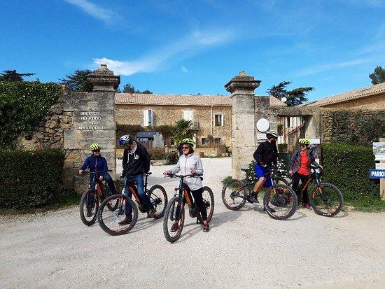 Seb Eco Bike