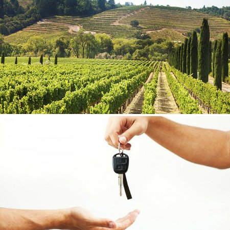 Wine Tour Drivers - Private Tours
