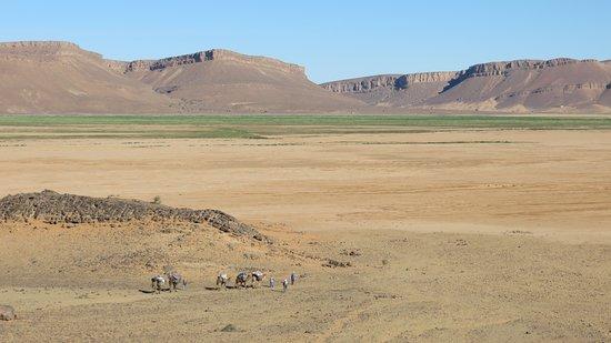 Auberge Camping Oasis El Mharech: Eingang zur Schlucht von Mharech.