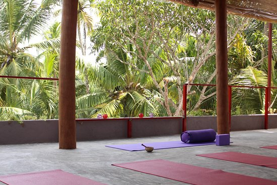 Gurubebila, Sri Lanka: Ready for yoga