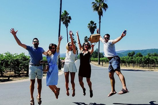 Napa Valley wine tour with lifetime...