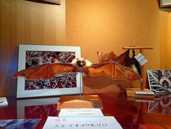 Kitadaito-son Folk Museum
