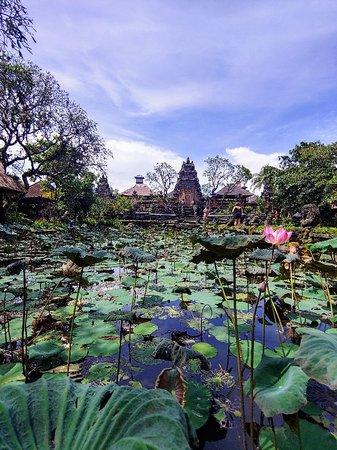 Saraswati Temple: Temple in the ♥ of Ubud