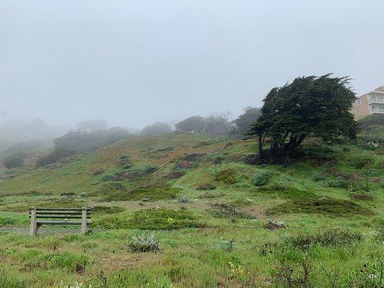 Balboa Natural Area