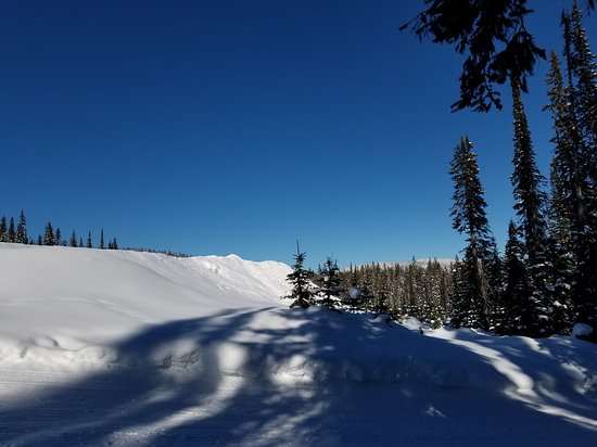 Big White, Canada: From the snow shoeing trail