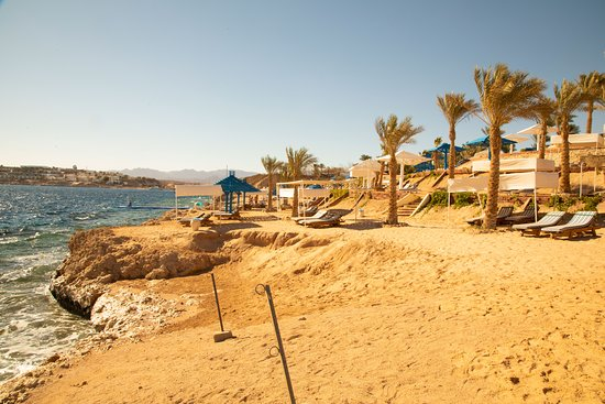 Pictures of Grand Oasis Resort - Sharm El Sheikh Photos - Tripadvisor