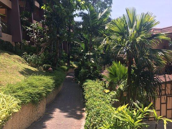 Отличный отдых в хорошем Отеле