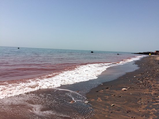 Hormozgan Province, Iran: Every sea has the special color. this one is red. Persian gulf in Hormoz island.