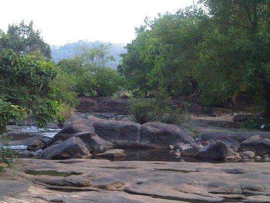 Thumboormuzhi Dam & Garden: Thumboormuzhi