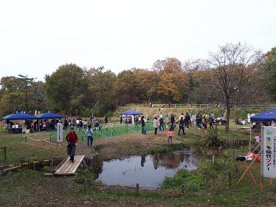 Hyogo Prefecture Yashirono Mori Park