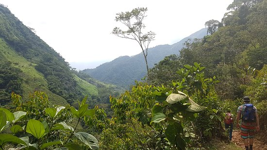Perfect and pure 3-day jungletrek!