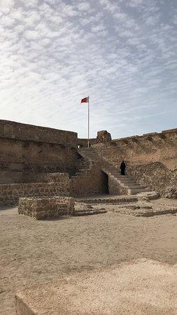 תמונה מArad Fort