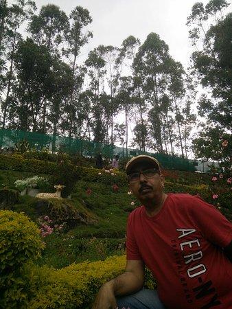 Planned Gardens in slopes