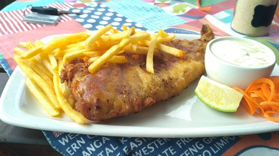 Lake Eland Game Reserve, South Africa: Really tasty fish and chips