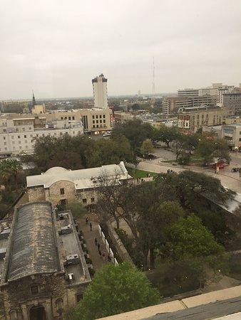 10th floor Alamo view