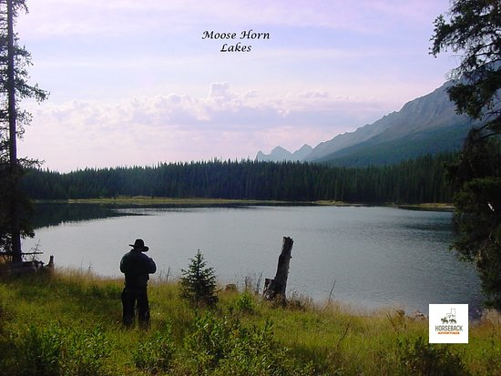 Brule, Canada: Moose Horn Lakes is one of the beautiful sites you will see on your 6 or 8 day horseback adventure. As you ride above timberline to look over the north boundary of Jasper National Park