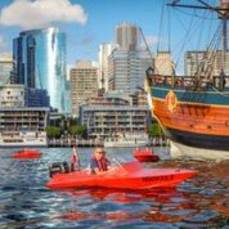 Sydney Speed Boat Adventures