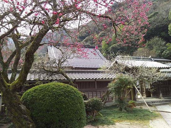 Tosen-ji Temple