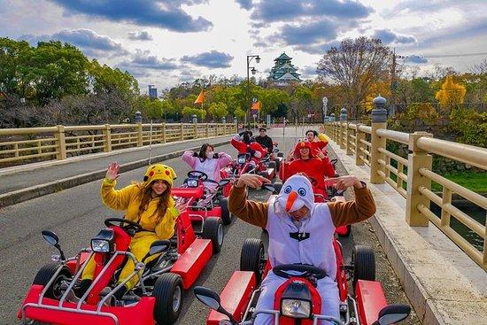 Street Osaka GoKart Tour met Funny ...