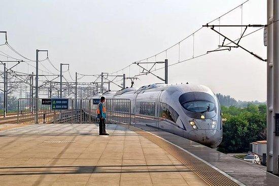 Estación privada de tren de Tianjin...
