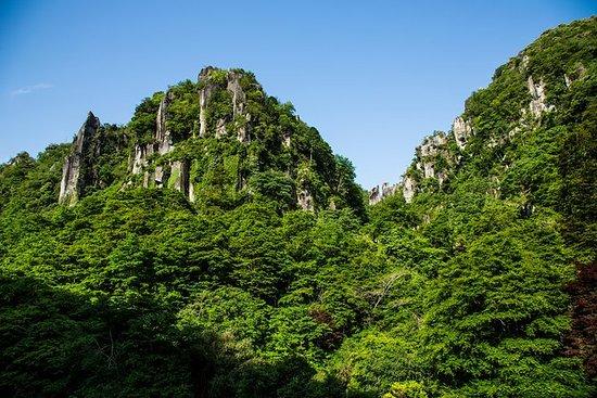 Around the fresh green Yayaki and...