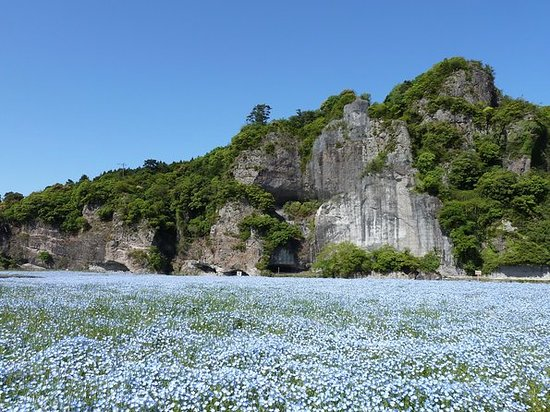 Blue and green Yama Gorge GW special...