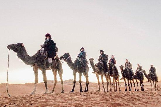 3 dager Sahara tur