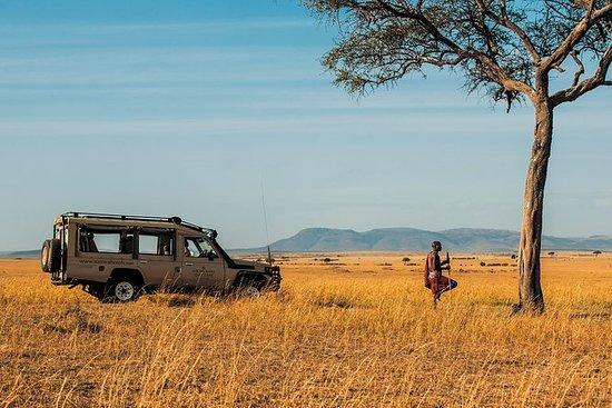 4-dagers fantastisk Kenya Safari