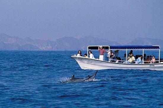 Entdecken Sie den Oman
