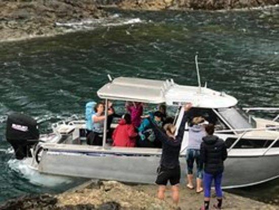 Залив Островов, Новая Зеландия: Cape Brett pick up