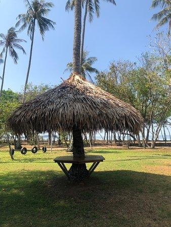 Bilde fra Khlong Prasong