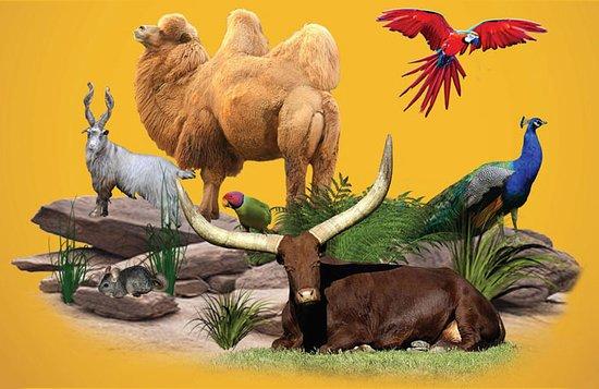 ZooParc du Cannet des Maures