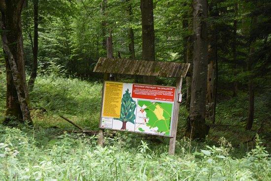 """Rezerwat przyrody """"Na Opalonym"""""""