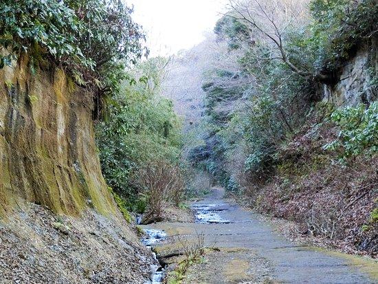 Asaina Sunken Road